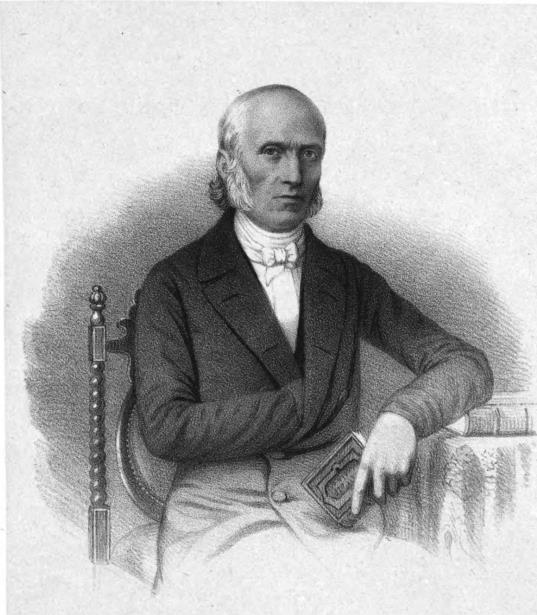 Portrait Sander